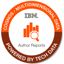 IBM+Cognos+ +Multidemensional+Data