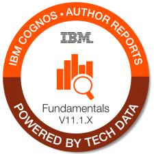 IBM+Cognos+ +Auth+Reports+Fund+V11.1.x