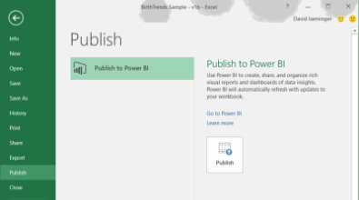Excel Publish Preview
