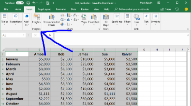 Excel Table Preview